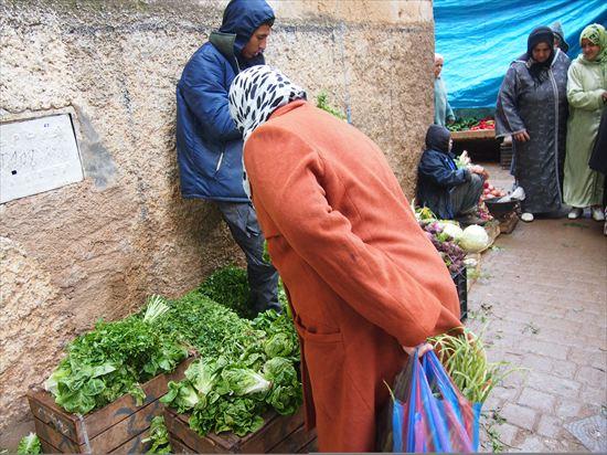 モロッコ・フェズで出会った家族