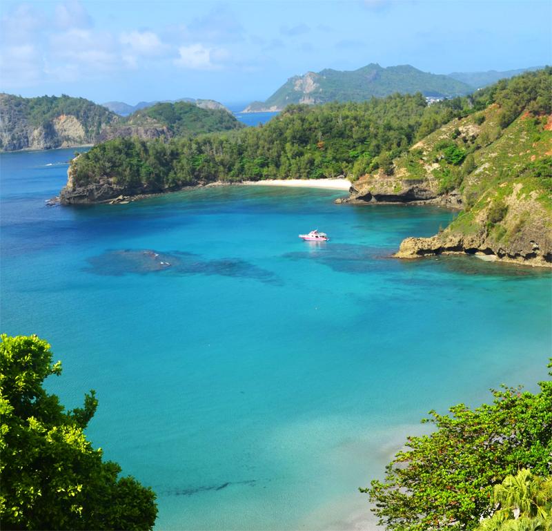 小笠原諸島の旅行を安く楽しむ♪小笠原観光のコツを伝授します!