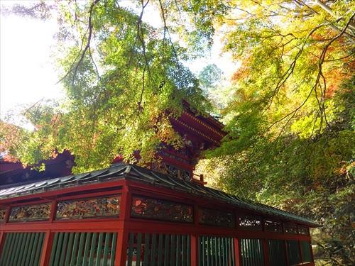 高尾山の紅葉狩りハイキング(1号路)で、パワースポットを巡る