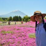 富士芝桜の見頃はいつ?8年分のデータから見頃の時期を徹底予想!