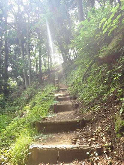 東丹沢の白山順礼峠に行ってきました♪【日帰り登山レポート】