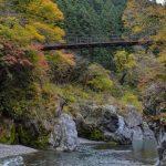 【鳩ノ巣渓谷の絶景ハイキングコース】古里~奥多摩を歩いたよ♪