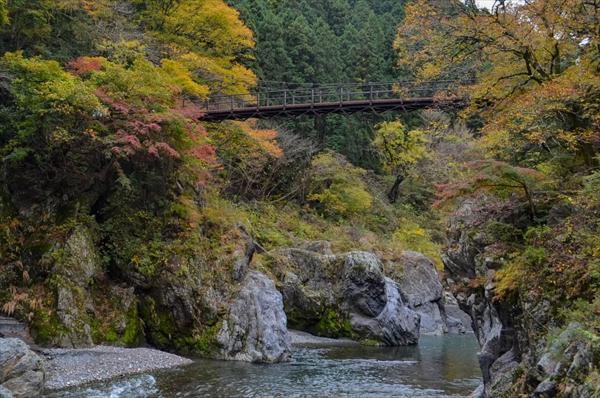 【鳩ノ巣渓谷の絶景ハイキングコース】古里~奥多摩を歩いてみた♪