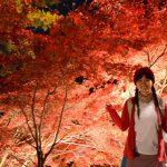 神奈川・大山寺の紅葉が絶景だった!!ライトアップの日程と注意点