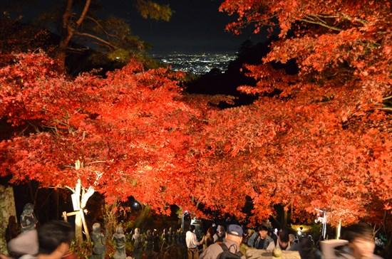 20161124-oyama002