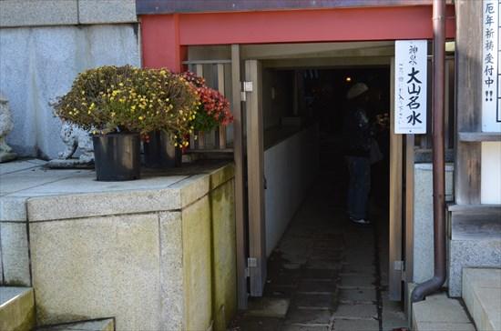 20161124-oyama039