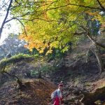 【神奈川・大山の登山情報まとめ】行き方、ルート、コースタイムなど