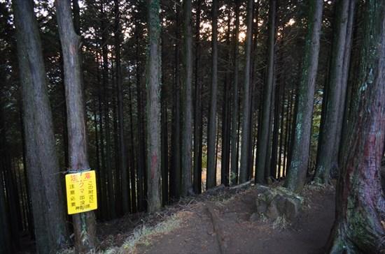 20161127-ooyama012