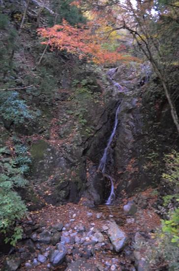 20161127-ooyama018