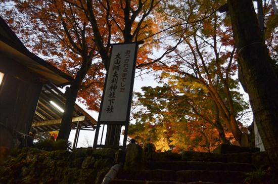 20161127-ooyama021