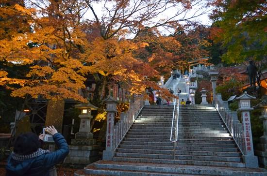 20161127-ooyama022