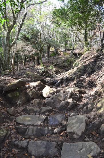 20161127-ooyama028