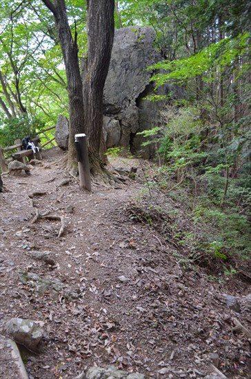 棒ノ折山(棒ノ嶺)のゴルジュ帯がすごい!おすすめ登山コースを ...