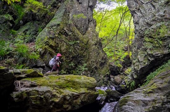 棒ノ折山(棒ノ嶺)のゴルジュ帯がすごい!おすすめ登山コースを紹介