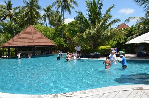 モルディブのホテルのプール